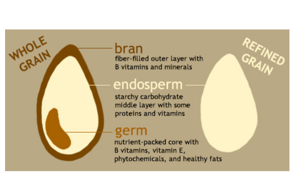 Starchy Grains  What are they? Whole grains and foods made