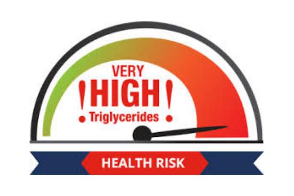 High Triglycerides Canva